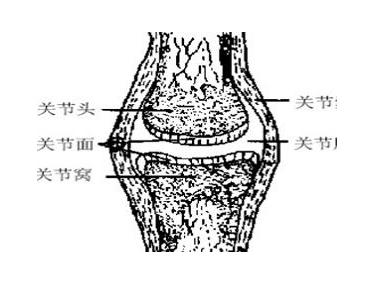 骨密度检测仪厂家分析骨硬化症状的表现