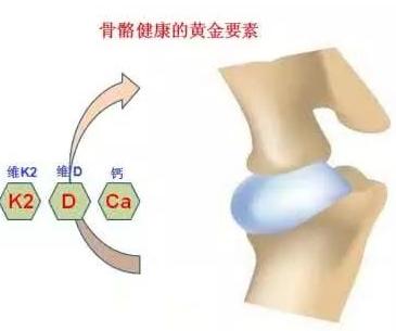 骨密度检测仪厂家提醒好习惯预防骨骼疾病
